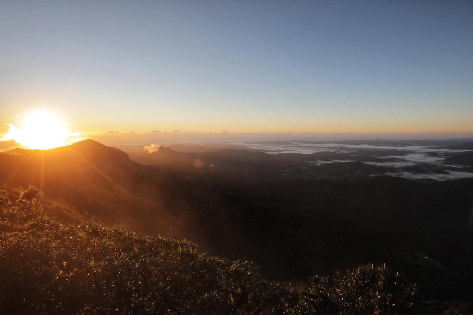 sunrise springbrook national park